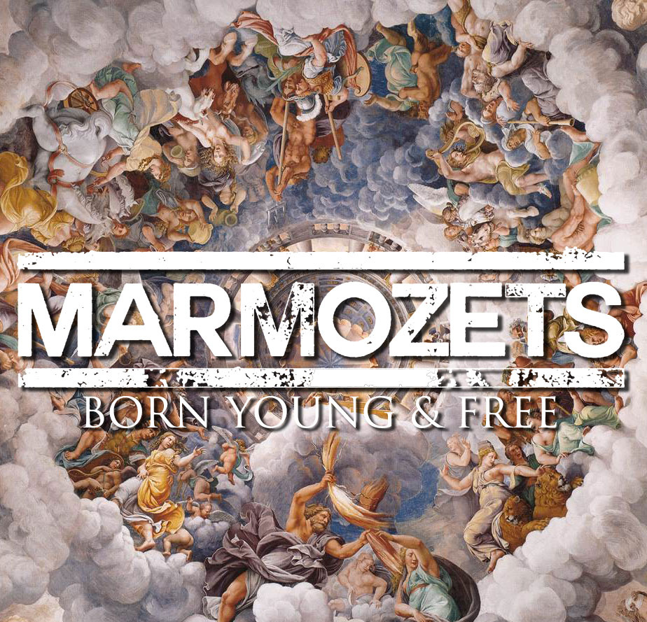 marmozets born young and free